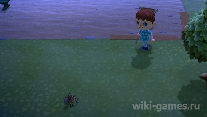 animal crossing tarantul 2